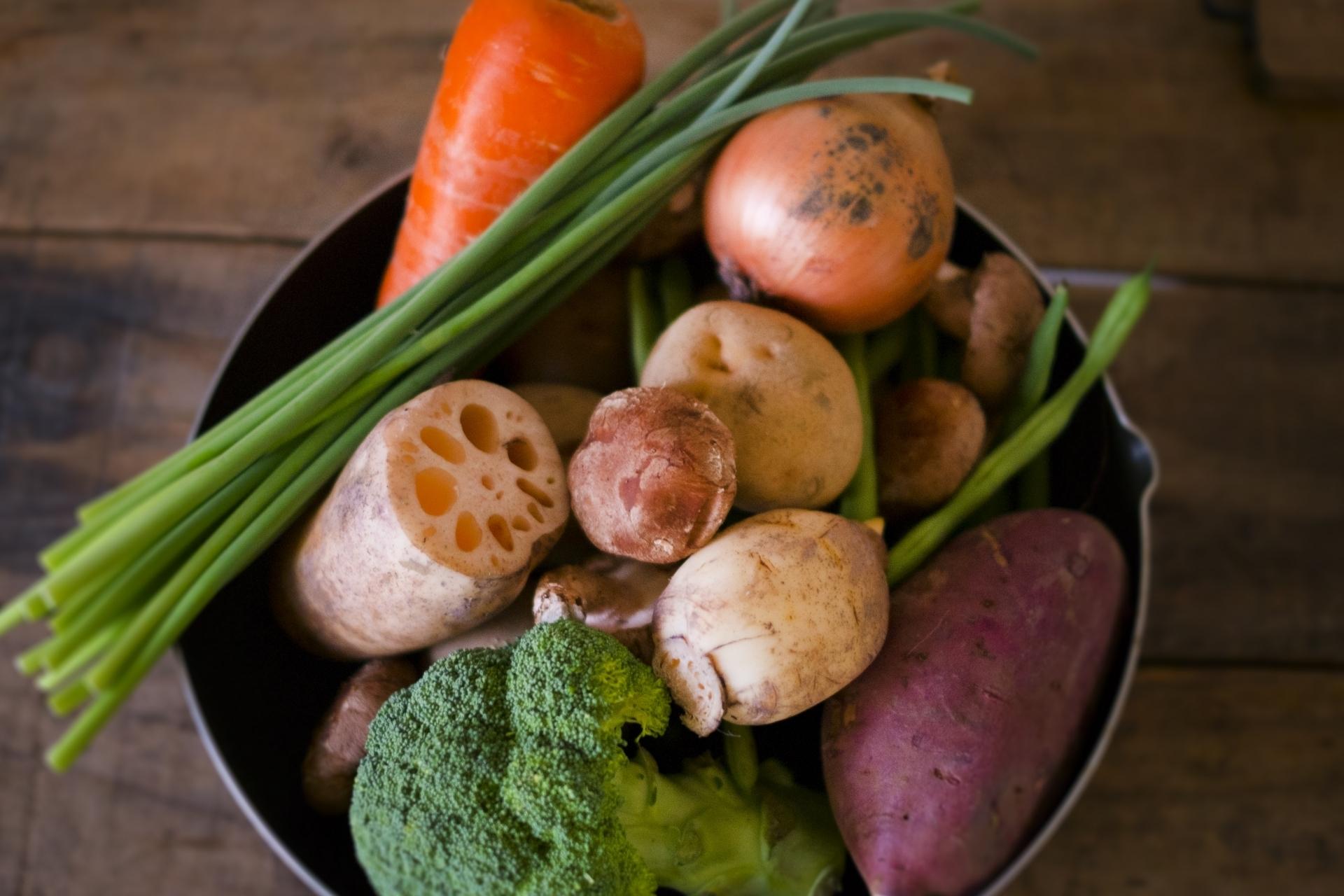 ボールに入った有機野菜 レンコン にんじん さつま じゃがいも いんげん ニンニクの芽